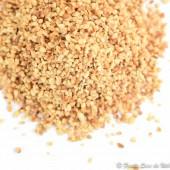 Noisette hachée grillée 2/4 - Pdt issu Agriculture biologique FR BIO-01