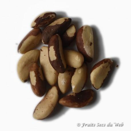 Noix du Brésil Pdt issu Agriculture biologique FR BIO-01